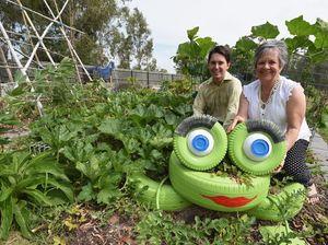 Free gardening workshop with Halcro St community