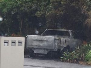 Car gutted and home damaged in suspected arson attacks