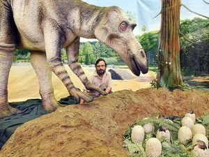 Businesses profit from dinosaur exhibition in M'boro
