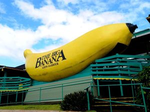 PM's message a highlight of Big Banana's 50th birthday party
