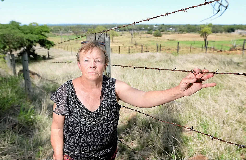 OH DEER: Animal activist Lyn Laskus is fighting to make sure that deer in the Lakes Creek Rd area are not culled this weekend, after concerned residents brought the issue to her attention.