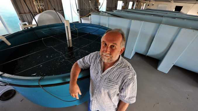 COURT ACTION: Clive Keenan is suing the Gladstone Ports Corporation.