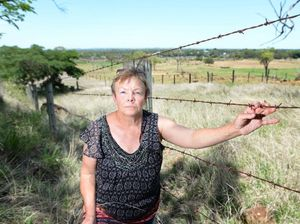 Mount Archer deer cull reined in, for now