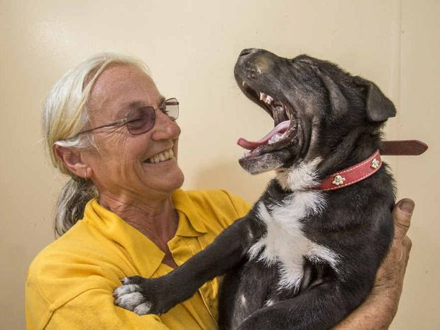 Happy Paws receives $10,000 donation from Dick Smith.