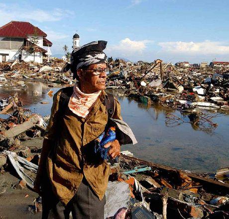SURVIVOR: A man surveys the remains of his Banda Aceh neighbourhood.