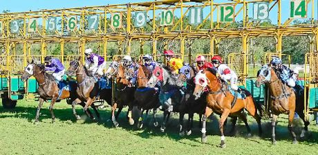 RACING: The horses jump from the gate at the start of the Calliope Rural Traders Cup.