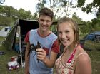 Hayden Fowler and Leigh Fowler from Crows Nest show off their catch while camping at Lake Cressbrook for New Year***s, Thursday, January 01, 2015. Photo Kevin Farmer / The Chronicle