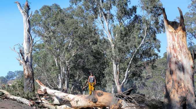 An image taken Sunday, Jan. 4, 2015 shows farmer Sam Randell checking bush fire damage on his Gumeracha, Adelaide Hills property. Fires swept across the hills destroying property and farmland. (AAP image/Russell Millard