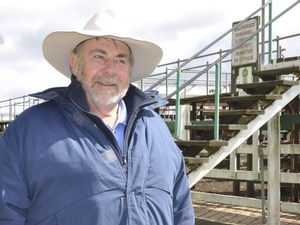 Cattle prices tipped to rise as demand increases