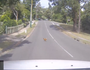 WATCH: Why did the chicken cross the road?