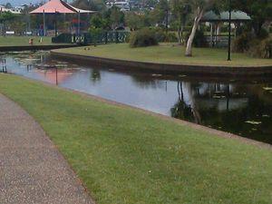 Needle found at Sunshine Coast park
