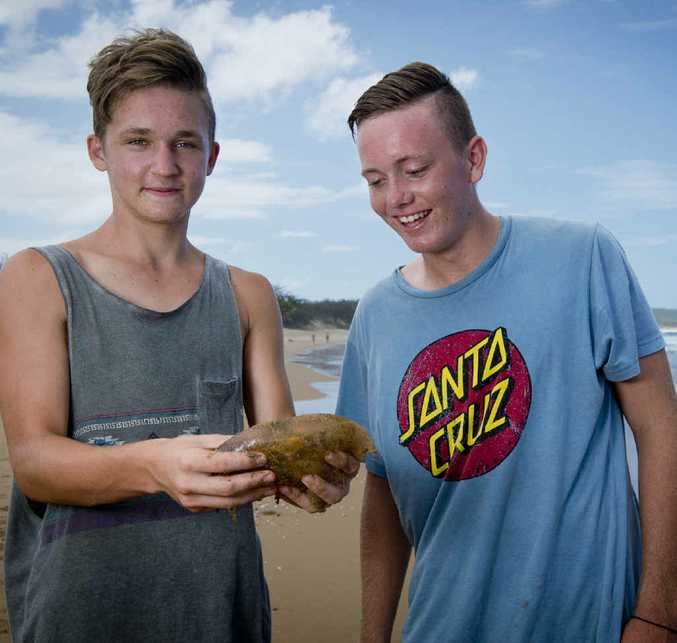 JELLYFISH: Kyle Piper, 17, and his mate Ben Ryan, 16, carefully take a closer look at one of the washed up jellyfish at Agnes Water.