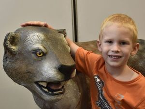 PHOTOS: Prehistoric giants on holiday in Toowoomba