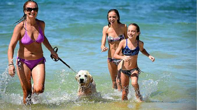 STAYING COOL: Christine Case of Moffat Beach with daughters Jasmyne, 14, and Amelita, 10, and golden retriever Rubble.