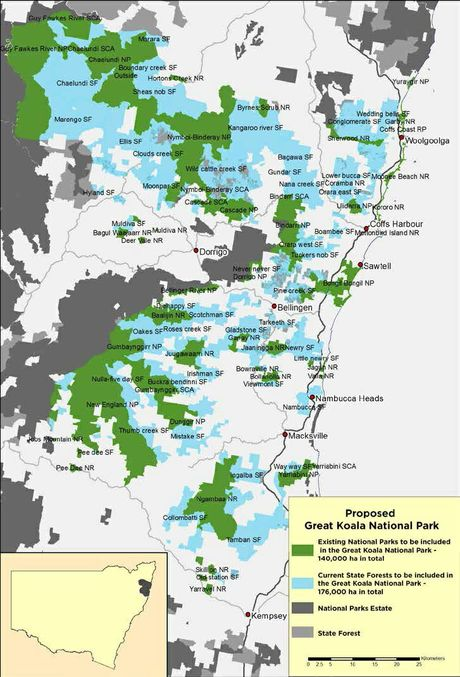 A map of the Great Koala National Park proposed by the NSW Opposition.
