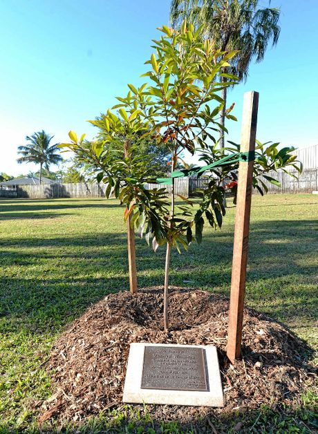 A plaque was laid and a small tree planted in honour of Marilyn Wallman by her 1972 Mackay North High School classmates.