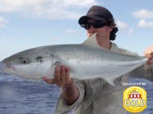Live-baiting off Fraser Island