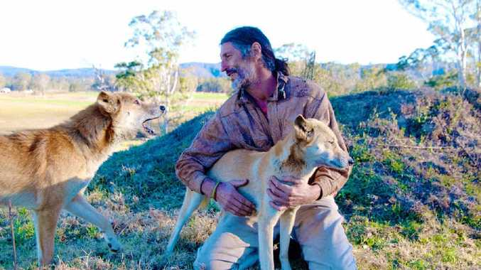 DINGO LOVE: Former Australian boxing champion John Cooper with two of his dingos. He and his dogs are the focus of a short film selected as a finalist for this year's Byron Bay All Shorts Film Festival.