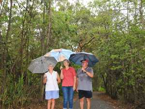 Umbrellas in hand, Tannum Sands residents guard themselves from bats