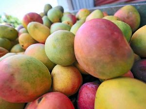 Much ado about mangoes