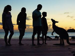 A natural winner - family fun with nature in Mackay