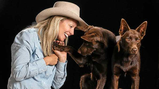 SPECTACULAR EFFORT: Dog trainer Heidi MacKay with her two stars Red and Oi, who were bred at Mandy Sansom's Callicoma stud before joining the cast of the Australian Outback Spectacular.