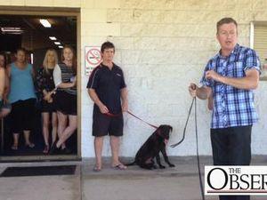 International dog trainer visits Gladstone