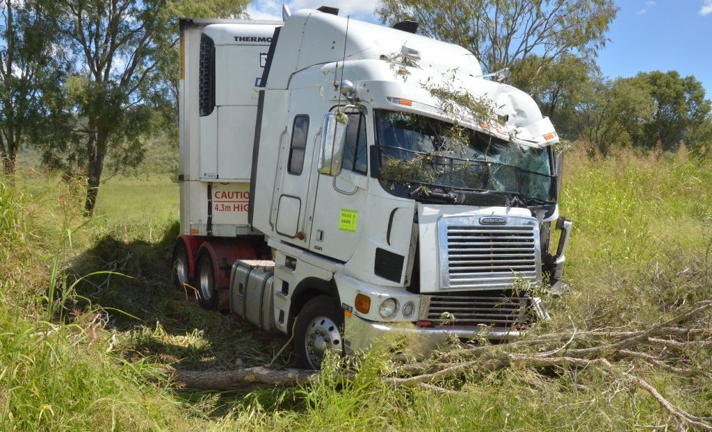 HALT: Gayndah police said a truck driver, who veered off the road coming down the Binjour Range, reported being surprised by a brown snake in his cabin. Photo Shirley Way / Central & North Burnett Times
