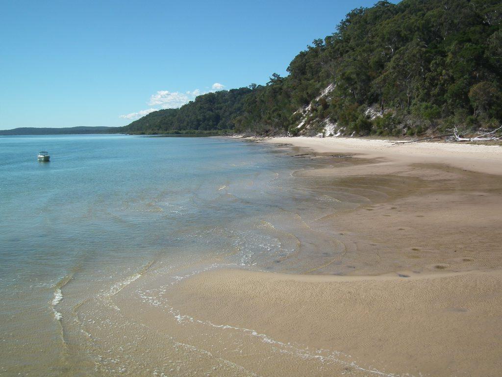 The beach at Fraser Island near Kingfisher Bay Resort.