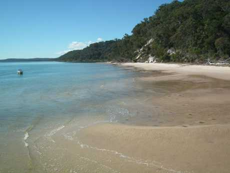 A beach near Kingfisher Bay Resort