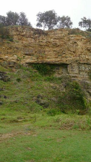 Pilot Hill, the Cliff Dalton fell down.