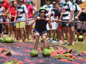 Massive Chinchilla Melon Festival smashes records