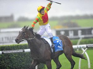 Trainer confident about Lankan Rupee's fitness