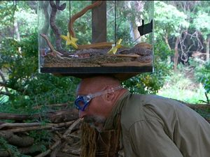 I'm A Celebrity's camp pest Merv tested by slithering snakes