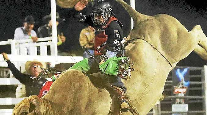The bucking bulls are the stars of the show at the PBR. Photo: Darryl Doyle - Double Dee Photos