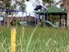 New laws see residents facing potential fines if their lawns grow longer than 10cm.