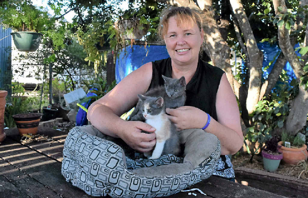 CARING NATURE: Julie Parsons with the last of the kittens she cared for after they were dropped into Dalby Total Care Vets and Pets. All of the surviving kittens found homes.