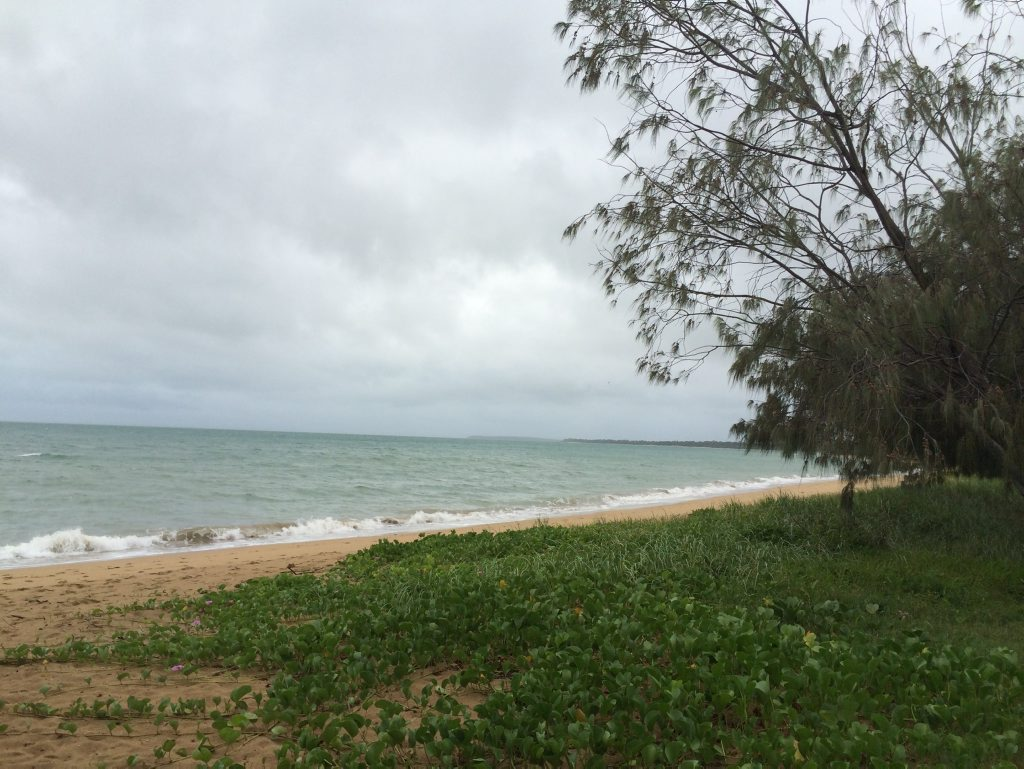 Conditions are overcast and windy at the beach near the Beach Rd-Esplanade roundabout in Pialba about 6.30am on Thursday.