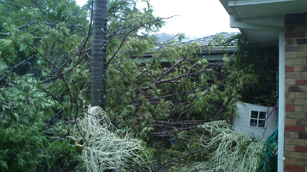 A tree that crushed and fence and cubby house before coming to rest on a house at Bottlebrush Crescent, Baywood Chase.