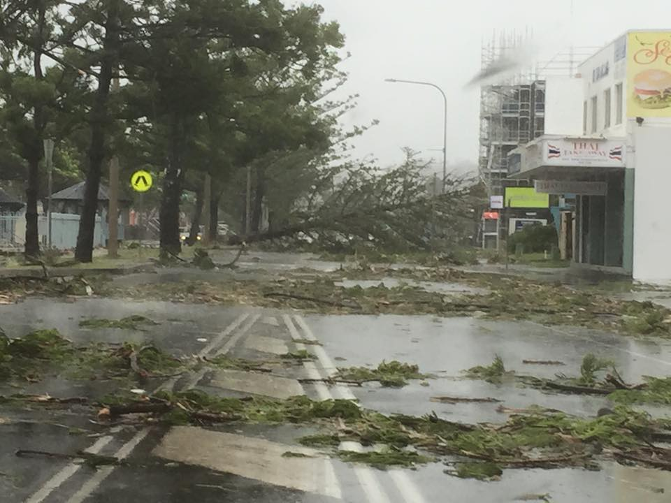 Trees are down in Yeppoon after Cyclone Marcia.