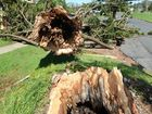 Researcher suggests Cyclone Marcia was a category 3, not 5