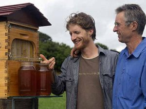 Honey harvesting invention sweet success for The Channon duo