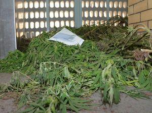 Drug haul biggest in years