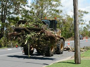 Clean up in Rockhampton after cyclone Marcia