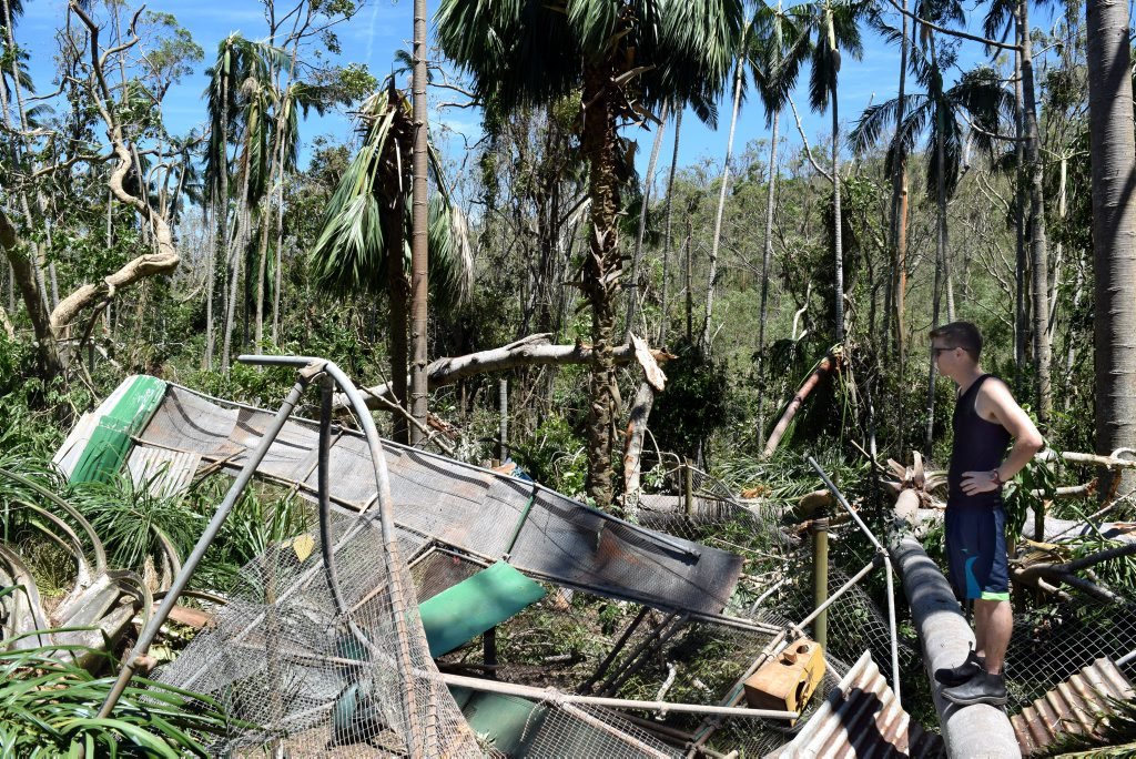 Cooberrie Park wildlife keeper Kieron Smedley has a look around the park that was demolished in Cyclone Marcia. Photo Lisa Benoit / The Morning Bulletin