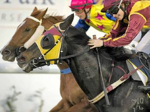 Tailwind to return after Allman Park third place