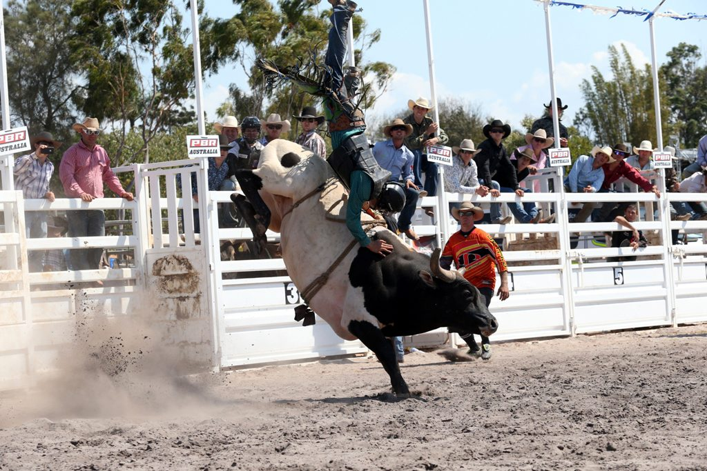 Sam O'Connor tries to ride bull Suicidal on the Professional Bull Riders Australia Tour.