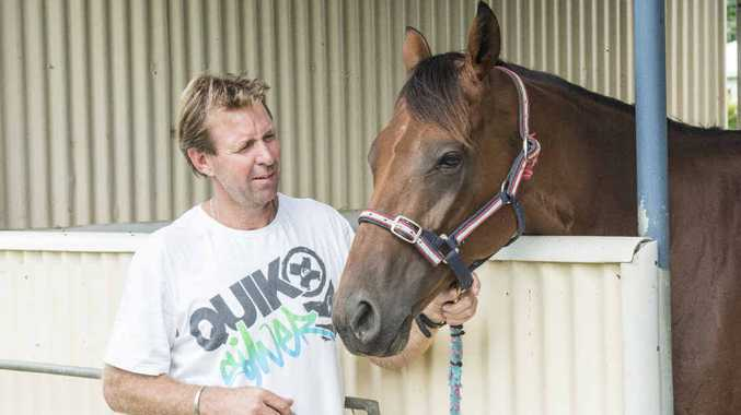 NOMINATED: Wayne Lawson has Nautile lined up for a tilt at the inaugural Country Championships. PHOTO: ADAM HOURIGAN