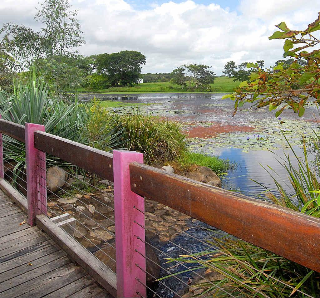 Mackay Botanic Gardens.