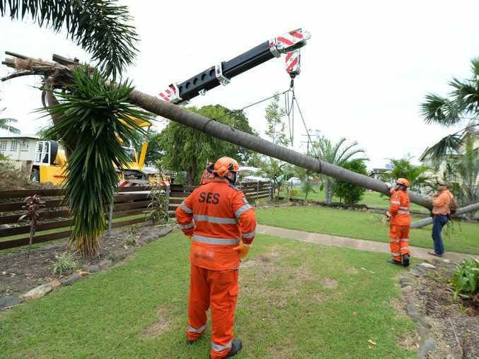 SES volunteers and workers from CQ Crane Hire clear two palm trees that had fallen on to a Horton Street residence during Cyclone Marcia as the clean-up continues. Photo: Chris Ison / The Morning Bulletin